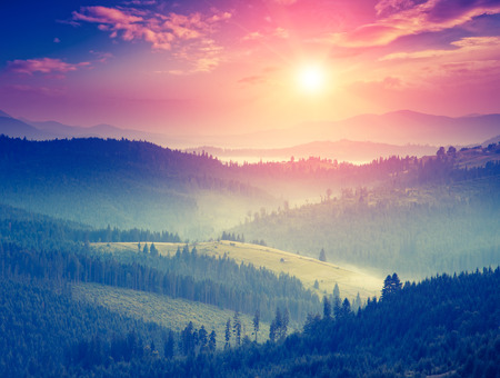 Photo pour Fantastic sunny hills glowing by sunlight. Dramatic scenery. Carpathian, Ukraine, Europe. Beauty world. Retro style filter.  - image libre de droit