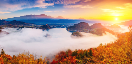 Photo for Aerial view of the island on alpine lake Bled from Osojnica viewpoint. Great and gorgeous morning scene. Popular tourist attraction. Location famous place Julian Alps, Slovenia, Europe. Beauty world. - Royalty Free Image