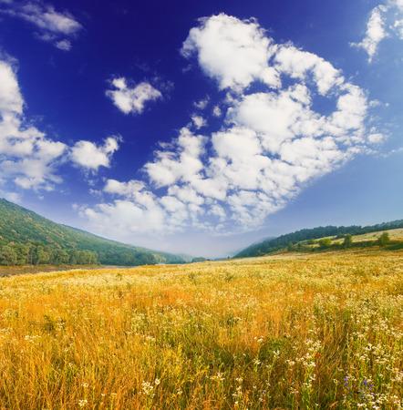 Photo pour spring field and the beautiful blue sky - image libre de droit