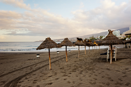 Photo for Sandy beach with sun umbrellas at sunset. Tenerife island. - Royalty Free Image