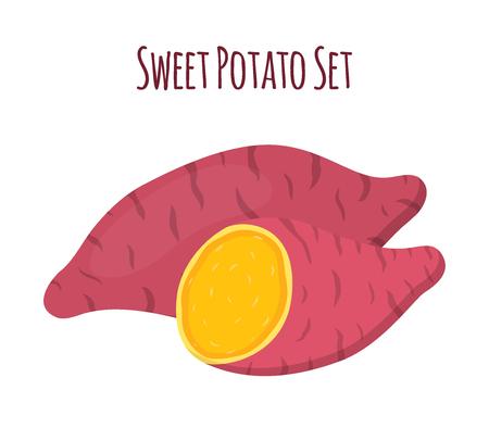 Ilustración de Brown batat, sweet potato, Organic healthy vegetable - Imagen libre de derechos