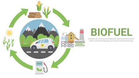 Ilustración de Biofuel Life Cycle, Biomass Ethanol From Corn, Sugarcane, Wood, Flat Design Vector Concept Illustration . Isolated on the White Background. - Imagen libre de derechos