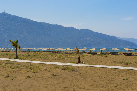 Deserted sandy beach with umbrellas and sun loungers