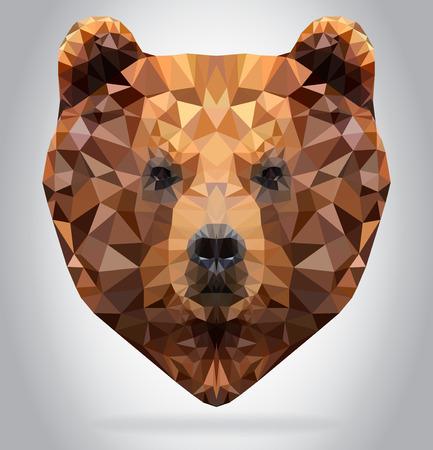 Grizzly Bear head vector isolated, geometric modern illustration