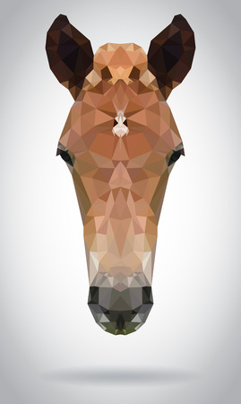 Horse head vector isolated, geometric modern illustration