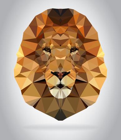 Lion head vector isolated, geometric modern illustration