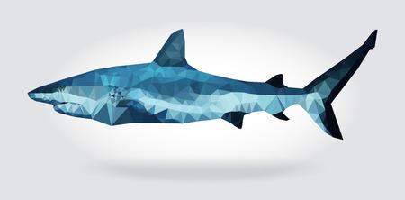 Shark body isolated, geometric modern illustration