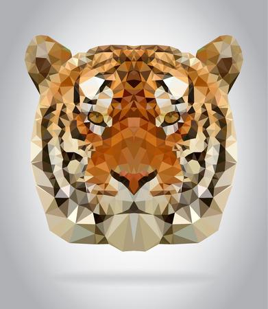 Tiger head vector isolated, geometric modern illustration