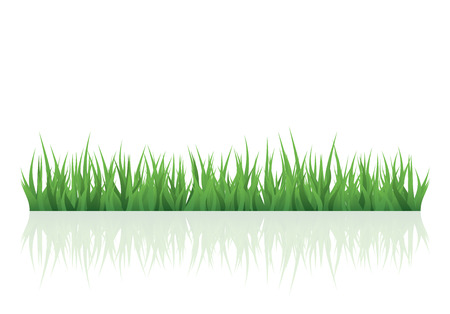 Illustration pour green grass for your project with copy space - image libre de droit