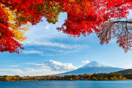 Photo pour Mt. Fuji in autumn - image libre de droit