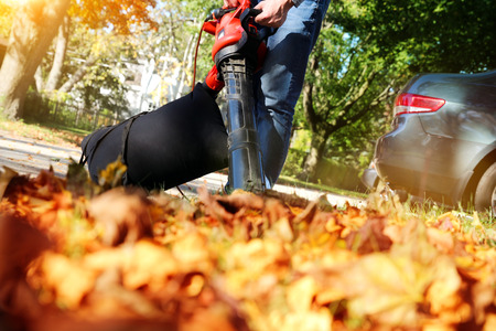 Photo pour Man working with  leaf blower: the leaves are being swirled up and down on a sunny day - image libre de droit