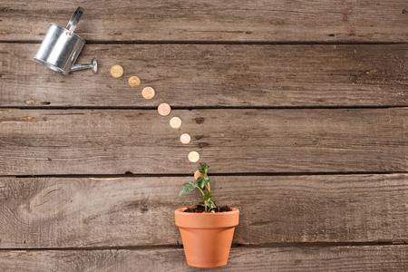 Foto de top view of coins pouring from watering can into plant, saving concept - Imagen libre de derechos