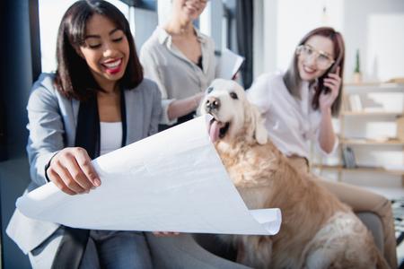 Foto de multiethnic businesswomen in formal wear showing blueprint to dog at office - Imagen libre de derechos