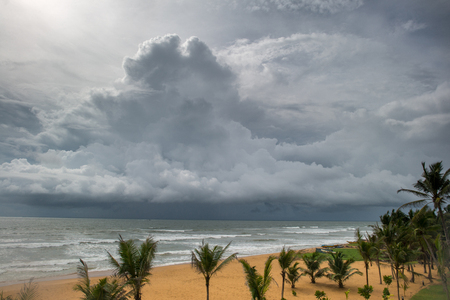 Foto de stormy sky over sea at tropical island with palm trees on foreground - Imagen libre de derechos
