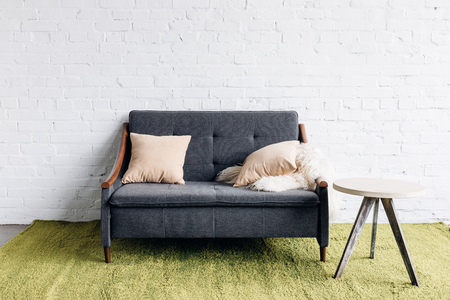 Photo for small couch in modern living room with white brick wall - Royalty Free Image