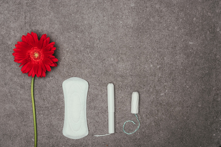 Foto de top view of arrangement of red flower, menstrual pad and tampons - Imagen libre de derechos