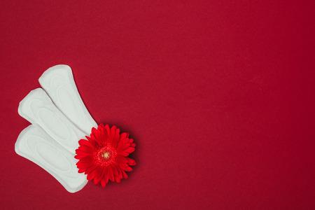 Photo pour top view of arranged menstrual pads and flower - image libre de droit