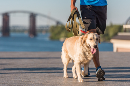 Photo pour sportsman walking with dog - image libre de droit