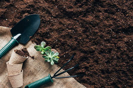 Photo for top view of gardening tools, flower pots and green plants on sackcloth - Royalty Free Image