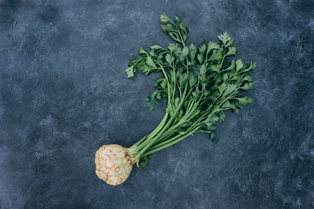 Photo for top view of fresh celery with root on black - Royalty Free Image