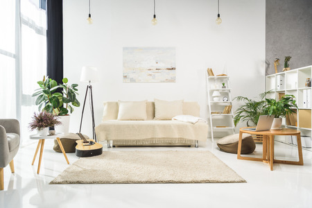 Foto per Minimalistic living room interior with white furniture and plants, lit by bright sunlight - Immagine Royalty Free