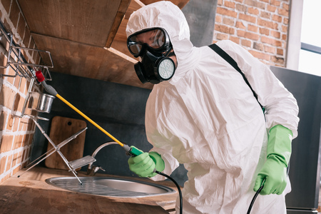 Foto de pest control worker spraying pesticides on metal shelves in kitchen - Imagen libre de derechos