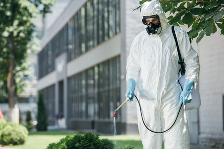 Photo for pest control worker in uniform and respirator spraying pesticides on street with sprayer - Royalty Free Image