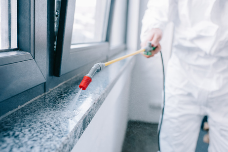 Photo for cropped image of pest control worker spraying pesticides on windowsill at home - Royalty Free Image