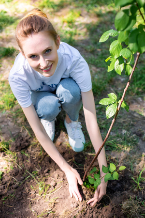 Photo pour overhead view of young smiling volunteer planting new tree - image libre de droit