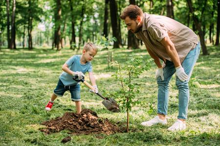Foto de father looking how son planting tree at park - Imagen libre de derechos