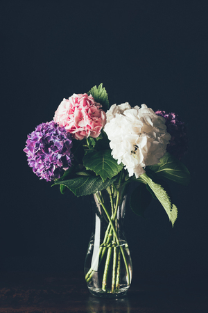 Photo for pink, white and purple hortensia flowers in glass vase, on black - Royalty Free Image