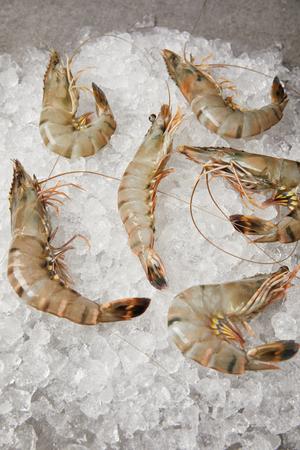Foto de top view of raw shrimps on crushed ice - Imagen libre de derechos