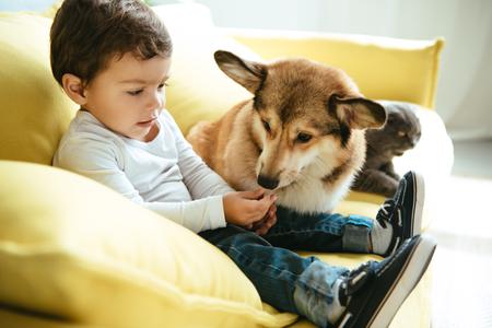 Photo pour adorable boy sitting on sofa with cat and dog - image libre de droit