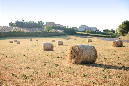 Photo pour hay bales on beautiful agricultural field and farm in provence, france - image libre de droit