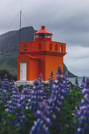 Foto de scenic shot of red lighthouse with purple wildflowers on foreground in Iceland - Imagen libre de derechos