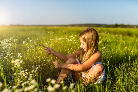 Foto de adorable little child collecting field flowers - Imagen libre de derechos