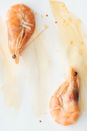 Photo for top view of delicious shrimps on white tabletop with watercolor strokes - Royalty Free Image
