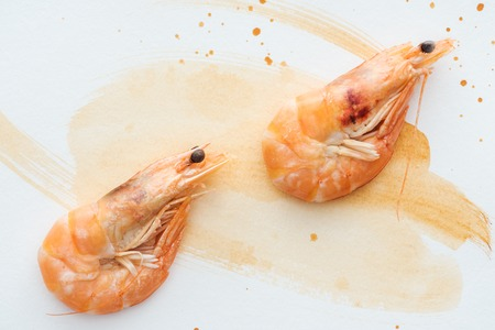 Photo for top view of uncooked shrimps on white tabletop with watercolor strokes - Royalty Free Image