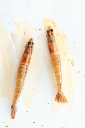 Photo for top view of uncooked tasty shrimps on white surface with watercolor strokes - Royalty Free Image