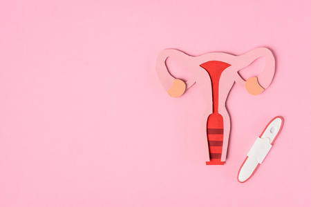 Photo for Elevated view of female reproductive system and pregnancy test on pink background - Royalty Free Image