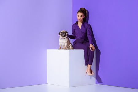 Photo pour elegant mulatto girl in purple suit sitting on cube with pug, ultra violet trend - image libre de droit