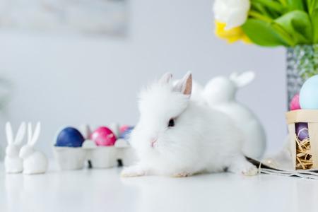 Foto de Fluffy bunny by painted eggs with Easter decor on table - Imagen libre de derechos