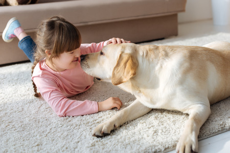Foto de Kid with down syndrome and Labrador retriever touching noses - Imagen libre de derechos