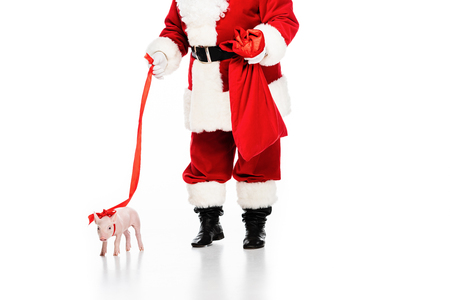 Foto de cropped shot of santa claus with sack and leashed piggy isolated on white - Imagen libre de derechos
