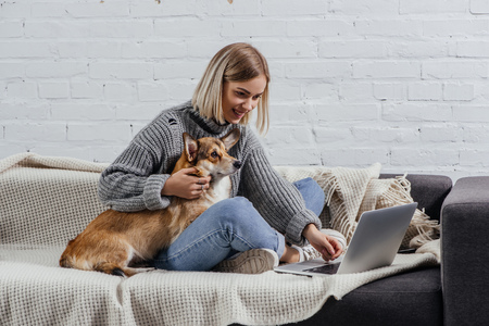 Foto per smiling young blonde woman sitting with welsh corgi dog on sofa and using laptop - Immagine Royalty Free