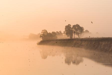Photo for Beautiful landscape with lake and shore at misty sunrise, Polesie, Pripyat - Royalty Free Image