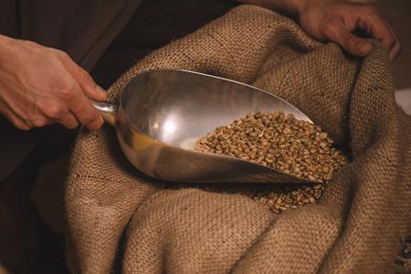Foto de partial view of worker gathering coffee beans with metal scoop from sack bag - Imagen libre de derechos