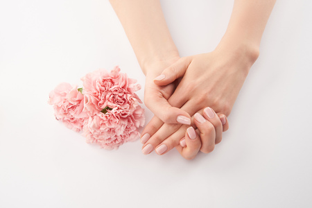 Foto de Partial view of female hands and carnations flowers on white background - Imagen libre de derechos