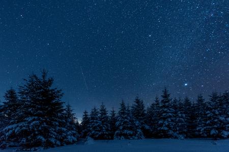 Foto de dark sky full of shiny stars in carpathian mountains in winter forest at night - Imagen libre de derechos