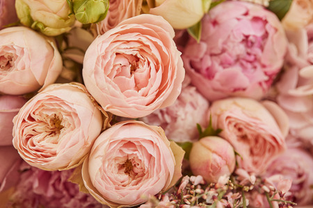 Photo for close up of bouquet of pink peonies - Royalty Free Image